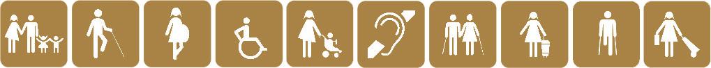 Iconos accesibilidad