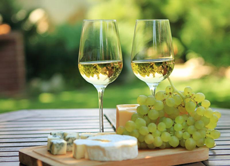 Maridaje de vinos: qué comida elegir con cada tipo