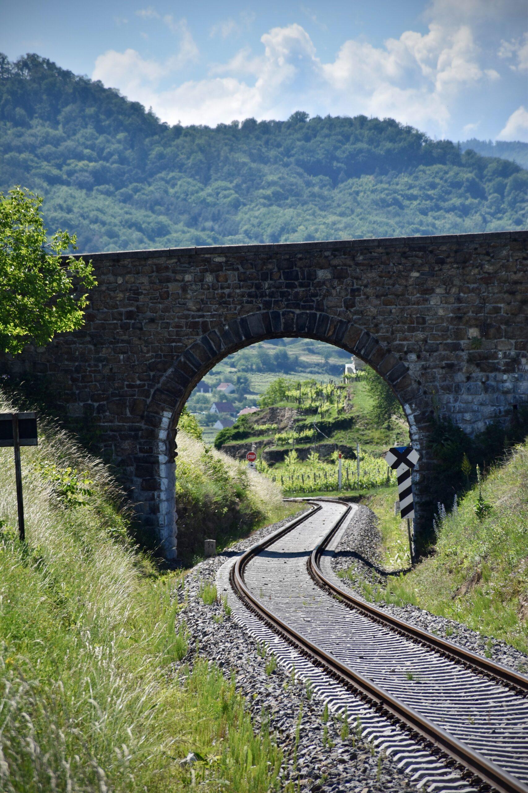 trenes y vino