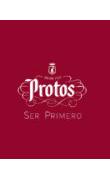Logo Protos y Ser Primero Fondo Color (PDF)